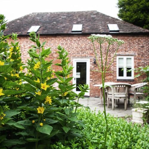 Garden Rm (1)